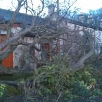 storm damage response1